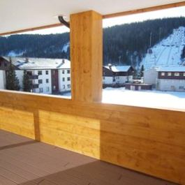 Appartements Ramsau am Dachstein by Schladmingurlaub